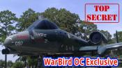 WarBird OC Exclusive