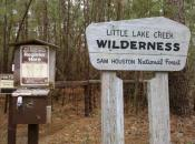 Little Lake Creek Wilderness